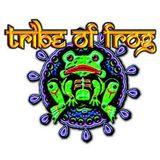 Tribe of Frog, Bristol - April 2014