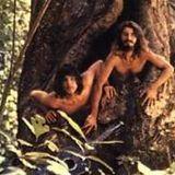 Espaços Entre Espaços - Brazilian psychedelia, folk, and funky singer songwriters
