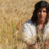 A prosperidade de José do Egito - Parte 2