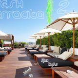 -Fresh Terracita Vol.2- Mixed by Alex Under