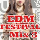 EDM FESTIVAL Mix 3