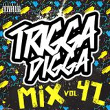 TRIGGA DIGGA MIX VOL. 42