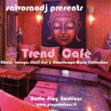 salvoraodj presents  Trend Cafè - Radio Play Emotions