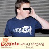 Bestimix 25: DJ Shepdog (NICE UP!)