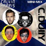 Calvin Harris Mini Mix
