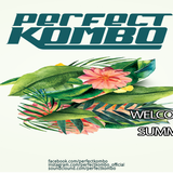 Perfect Kombo - Welcome To Summer (Feat. Javier Escala)