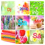 2013 Spring SoUlFuL mIX