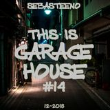 This Is GARAGE HOUSE #14 - December 2018