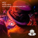 Hoj - Robot Heart - Burning Man 2014