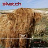 Tracks from the band Sketch album Shed life