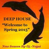 "DEEP HOUSE ""WELCOME TO SPRING 2015""  BY-DJ.-NEGUI"