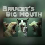 Brucey's Big Mouth 10th August 2015