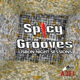 MIKE GREEN @ SPICY GROOVES PODCAST #8