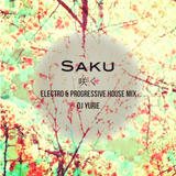 Saku (Electro & Progressive House Mix)