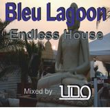 Endless house @ The Blue lagoon