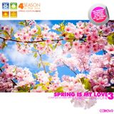 Laurent Tenstone - 4 Season in the Mix - The Spring is My Love 2013 3 - CCRM049