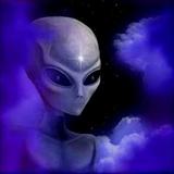 Psytrance Mix 24 - Dominant Species