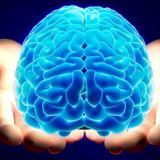 Brain Crunch (27-12-2012)