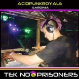 Tek No Prisoners - Acid Punk Royale 2017 Promo Mix