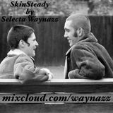 Skinsteady
