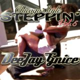CHICAGO STYLE STEPPIN VOL.5