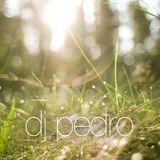 DJ Pedro - Springlove 2014