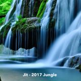 Jit Ambient Jungle Jan 2017
