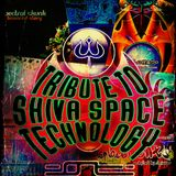 Tribut to Shiva Space Technology (2002-2006) by DEEjaY sEEmaNN (B.A.M. Records)