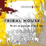 DESTINATION TRIBAL - The BEST Of Tribal House 2 CD2 [ 2004 ]