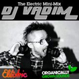 Radio Vah-Deem - DJ Vadim's Electric Mini-Mix