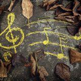 SCRUB - Autumn Groover