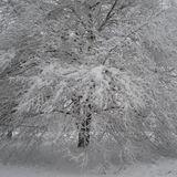 Dad Radio #44 Ice and Snow