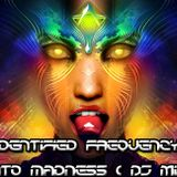 Unidentified Frequency - Into Madness(DJ Mix)