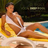 DJ BIGICE - Vocal Deep Pool ... www.djbigice.us