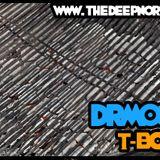 DRM030 - T-Bone's Deep North Mix
