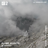 Plume Heights w/ Hustlekat - 4th July 2017