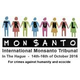 Miryam Gorban - Monsanto será juzgado en el Tribunal de La Haya (25-08-16)
