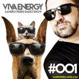 Sandro Peres Viva Energy #001