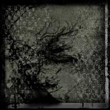 The Mobius: noir