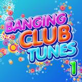 Banging Club Tunes 2013 [Mix 1] House/EDM