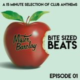 Mister Barclay presents Bite Sized Beats (Episode 01)