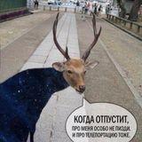 DJDAO_Dream of summer_2012