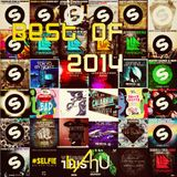 Electric Area #67 (Best of 2014)