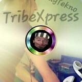 Set Tribe to Acid - TribeXpress