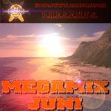 DJ Sepp - Megamix Juni 2003