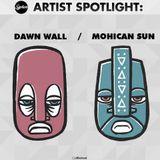 Artist Spotlight: Dawn Wall / Mohican Sun