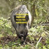 dj parker memoires of a forest raver 91 forestboar loves his ardcore mix