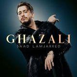 Inconnu en France, Superstar au Maroc : Saad Lamjarred - la chronique de Haroun