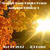 Soulful Deep Funky House Vol 11 2017 - DJ Peter