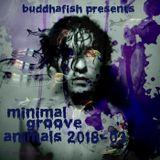 Minimal Groove Animals 2018-03